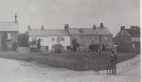 View of village green in 1904. The tree is a small sapling.